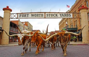 Cowboy-Texas-Tradition: Fort Worth