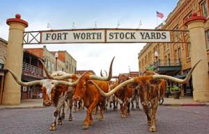 Cowboy-Texas-Tradition: Fort Worth