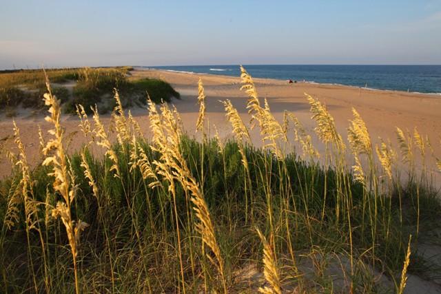 Dare County beach
