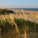Dare County Beach - (Foto: VisitNC.com)