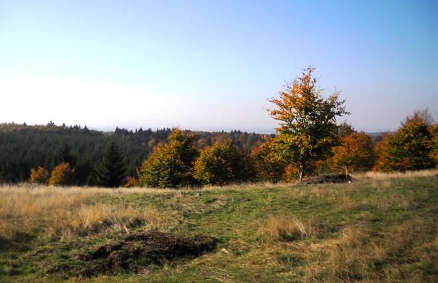 Herbst im Kellerwald-02
