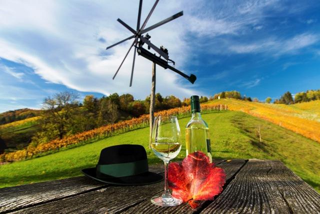 Steirisches Weinland-steiermark2745