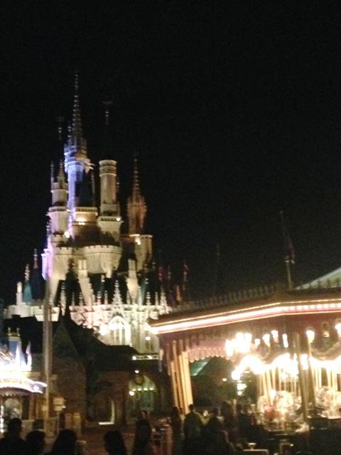 WDW at Night-Schloss
