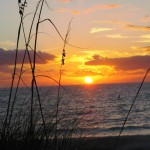 Jeden Abend anders: Sunset auf Anna Maria Island
