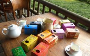 Tee aus Mauritius