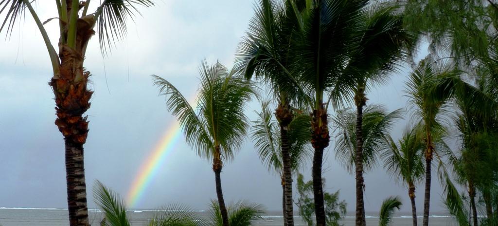 Traumziel-Mauritius-klein