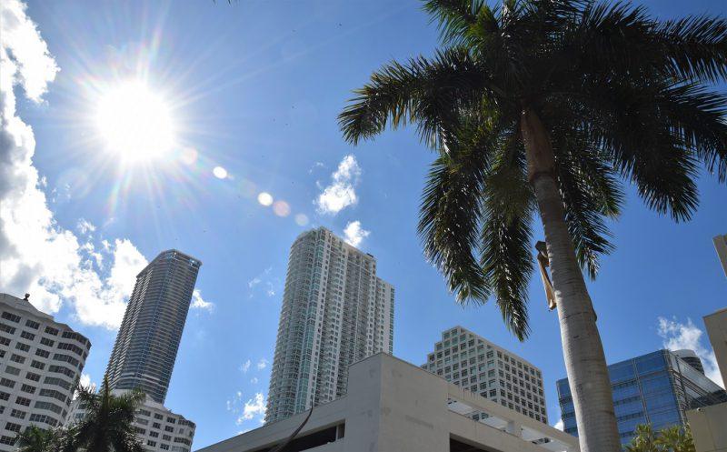Downtown Miami ist wieder in
