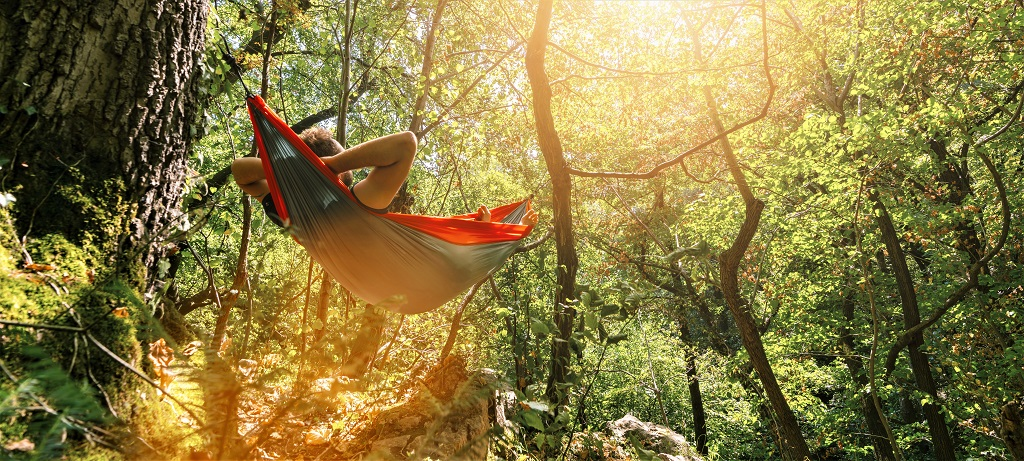man relaxing in the hammock hanging among the trees in the forest